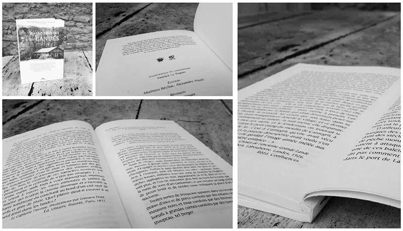 Livre Je vous écris des Landes éd. Pimientos Mathieu Béchac maquettiste PAO