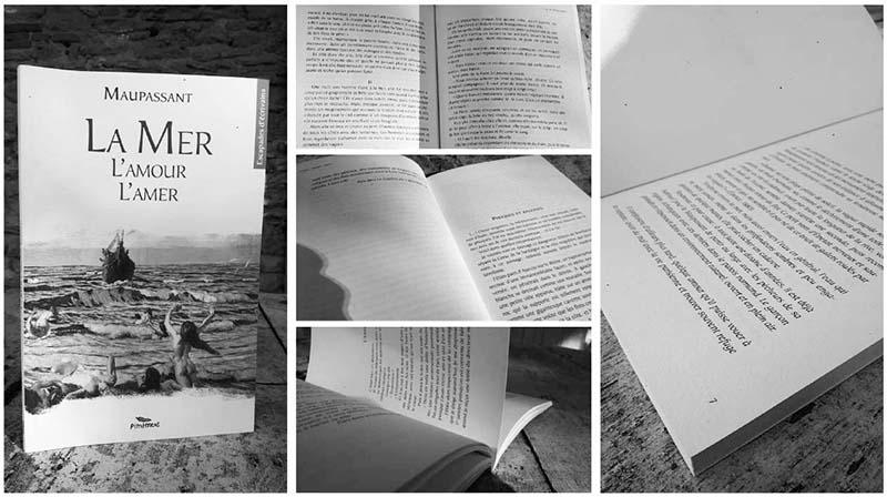 Livre La mer, l'amour, l'amer éd. Pimientos Mathieu Béchac maquettiste PAO